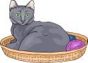 cat_breeds