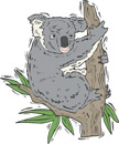Koalas Printable