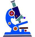 Science Fair Project Ideas Printable