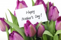 bigstock-Mother-s-Day-Concept-Purple-27368303-300x200