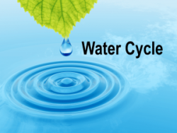 water-cycle-300x225