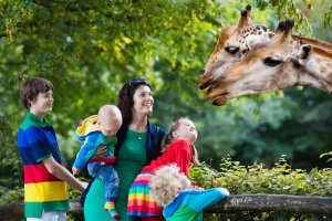 Zoo Animals Printable